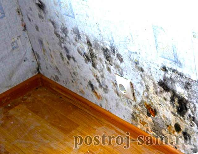 Мокнет кирпичная стена в доме: причины, как избавиться